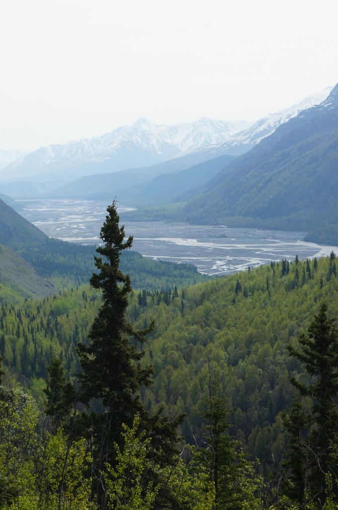 A view of the Matanuska river delta from high in the hills