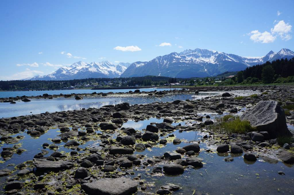 The tidepools outside of Haines, AK