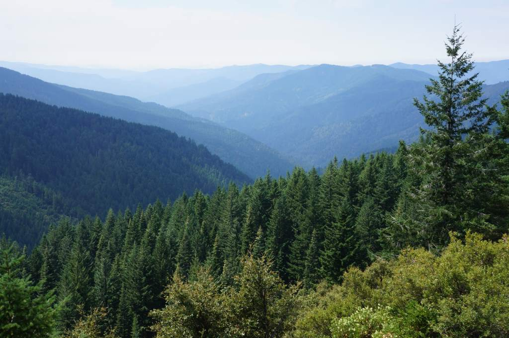 Looking down into the valleys from Bear Camp Road
