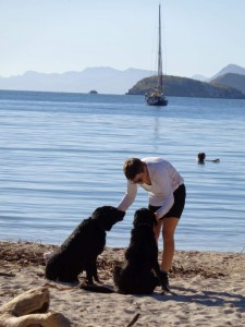 Paradise has black labs to play fetch with.
