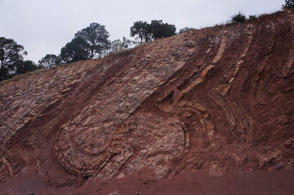 A surprise met us on the side of a mountain in the form of beautiful rock folds revealed by the road's cut-out.