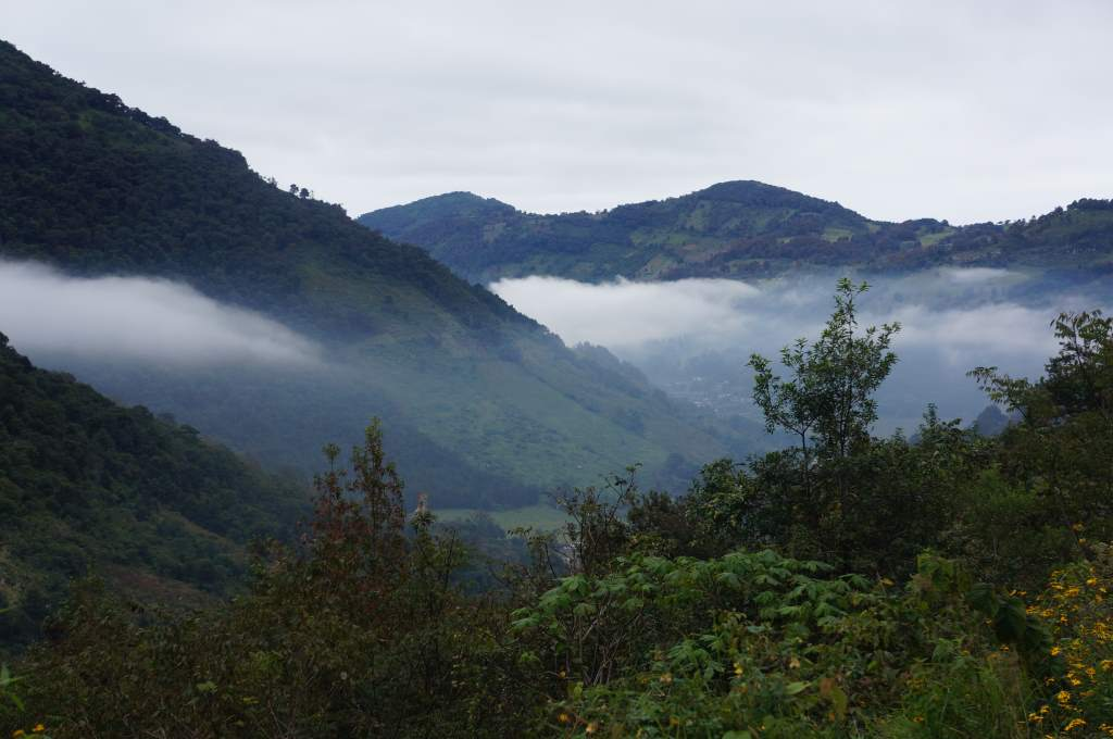 Misty clouds above the valley