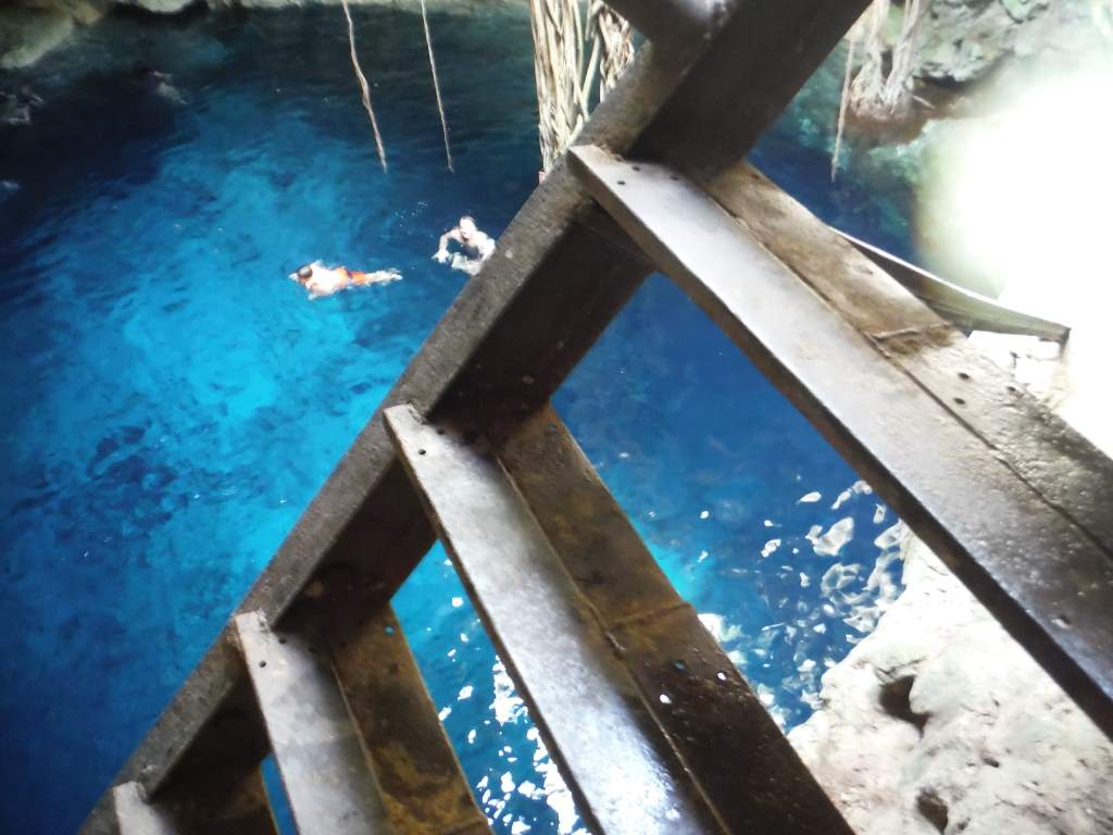 A more typical cenote: streaming sunlight, clear water, reaching tree roots.